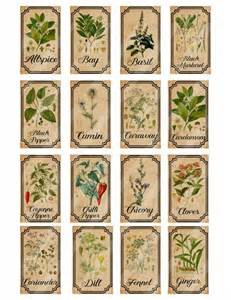 vintage seed packets best 25 vintage labels ideas on kitchen