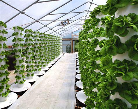 Hydroponic Gardening by Gardening 171 Galaxy Dreams