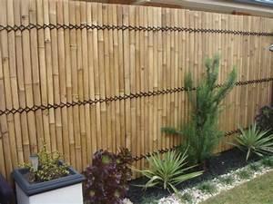 Bambus Sichtschutz Schn Und Ko Freundlich