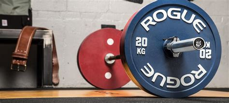 rogue fitness stack equipment