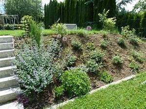 Gartengestaltung Böschung Gestalten : gro fl chige bepflanzungen hat das jemand seite 1 gartengestaltung mein sch ner garten ~ Markanthonyermac.com Haus und Dekorationen