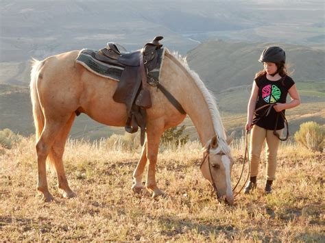 picks travel ashcroft sundance columbia ranch riding guest horse british experience