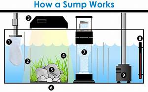 What Is A Sump