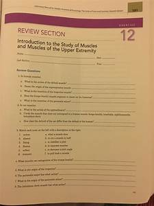 Solved  Lalboratory Manual For Saledin  Anatomy U0026 Paysiolgy