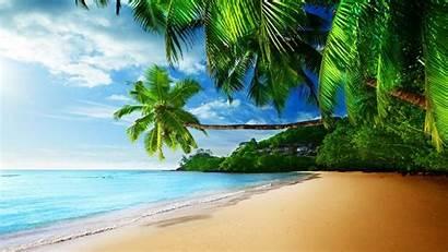 Tropical Desktop Beach Waves Wallpapers Palm Ocean