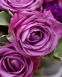 Blumen Und Ihre Bedeutung : garten die bedeutung der blumen ~ Frokenaadalensverden.com Haus und Dekorationen