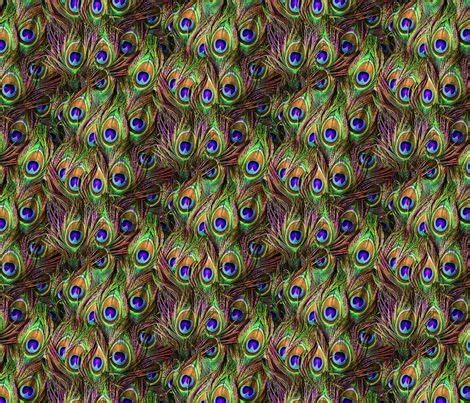 Peacock Feather Upholstery Fabric by 38 Best Peacock Upholstery Fabric Images On