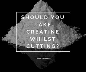 Creatine Help You Lose Weight
