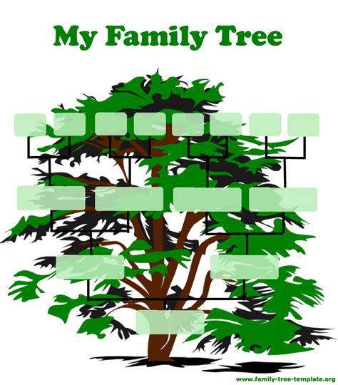 family tree chart clipart cliparts