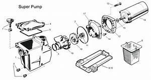 Hayward Pool Motor Wiring Diagram : pentair superflo pump wiring diagram collection ~ A.2002-acura-tl-radio.info Haus und Dekorationen