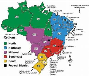 Map Of Brazil With 5 Regions And Distribution Of Human