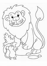 Lion Coloring Pages Easy Tulamama sketch template