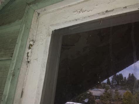 asbestos  window glazing hawk environmental services