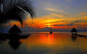 Tropical Sunset wallpaper | nature and landscape ...
