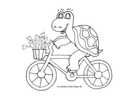 schildkroete faehrt fahrrad nadines ausmalbilder