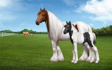 Horse Wallpaper For Computer ·①