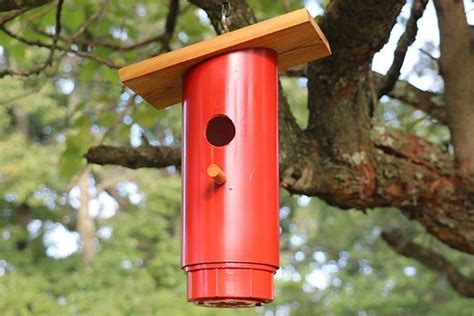blue bird nest box plans approved pvc birdhouse design patterns monograms stencils diy