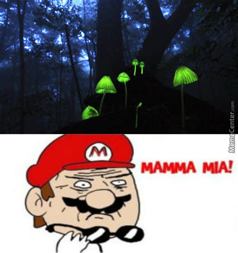 Mushrooms Memes. Best Collection of Funny Mushrooms Pictures