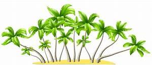 Palm trees clipart - Cliparting.com