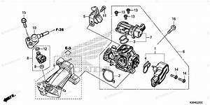 Honda Scooter 2015 Oem Parts Diagram For Throttle Body    Fuel Injector