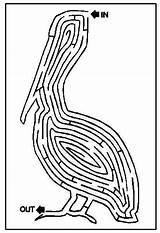 Coloring Printable Puzzles Dozen Half Fish sketch template