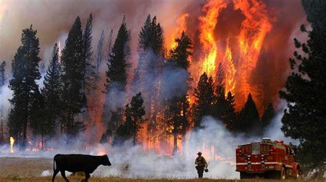 incendios forestales de california se duplican huyen miles