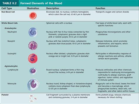 formed elements blood
