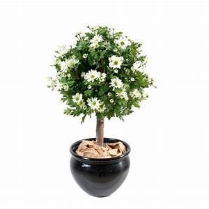 Arbuste D Intérieur : arbuste artificiel interieur art floral maison retraite ~ Premium-room.com Idées de Décoration