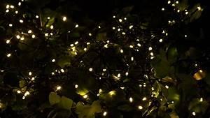 Lichterkette Außen Weihnachten : innotech 200 led solar lichterkette f r au en im test haus garten tipps ~ Buech-reservation.com Haus und Dekorationen