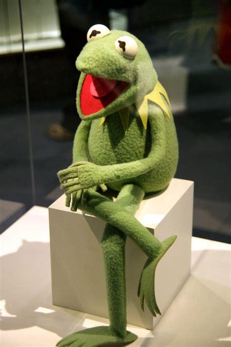 kermit  frog smithsonian museum  natural history flickr