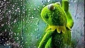 Kermit The Frog Rolling Up Window