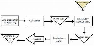 Operational Flow Sugarcane Farming