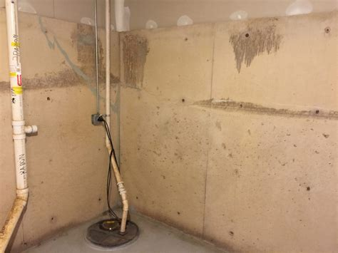 mold proof drywall painting basement walls with mold and mildew proof paint