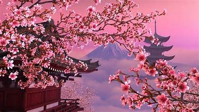 Sakura Pink Japan Wallpapers