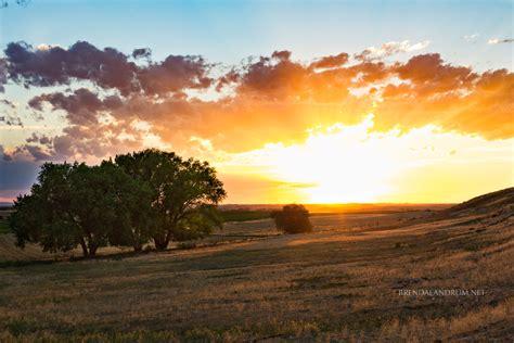 Nebraska Tree + Sunset – Brenda Landrum – Portrait ...