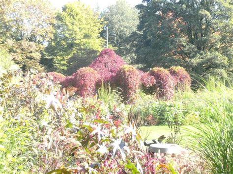 Botanischer Garten Augsburg Im Herbst by Herbst Im Botanischen Garten Augsburg Picture Of