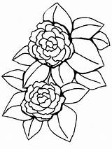 Coloring Peony Flower Pages Flowers Colors Bright Choose Favorite sketch template