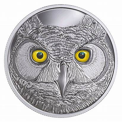 Owl Coin Canadian Eyes Horned Mint Dark