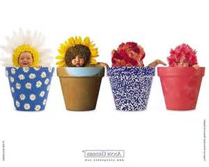 geddes flower pot babies www imgkid the image kid has it