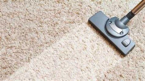 2 Rooms $79, Professional Carpet Cleaning Near Me Dri