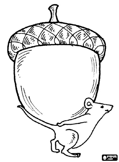 acorn coloring pages getcoloringpagescom