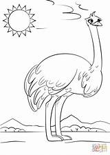 Ostrich Coloring Letter Cartoon Printable Preschool Alphabet Supercoloring Crafts Ocean Printables Worksheets Drawing Abc Animals Puzzle Categories Paper Birds Tags sketch template