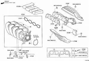 2005 Toyota Corolla Engine Intake Manifold Gasket  Exhaust