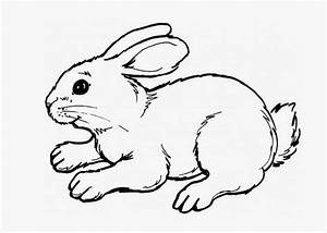 rabbit coloring pages - cute baby bunny coloring pages