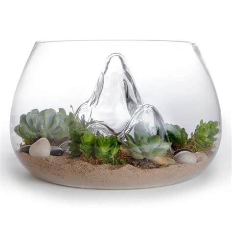 award winning  glass terrarium indoor garden novacom
