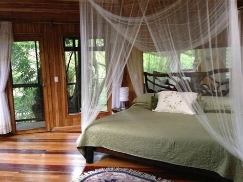 boutique canap a lovely treehouse room glade picture of canopy