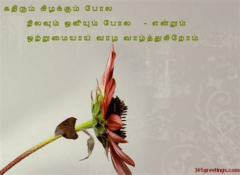 wedding wishes  tamil images