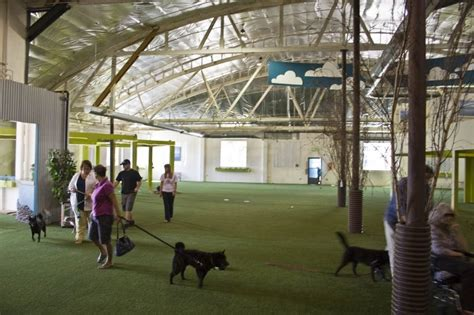 benson indoor park a business crowdfunding project in