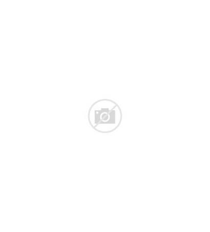 Lion Cartoon Draw Easy Head Drawing Lions