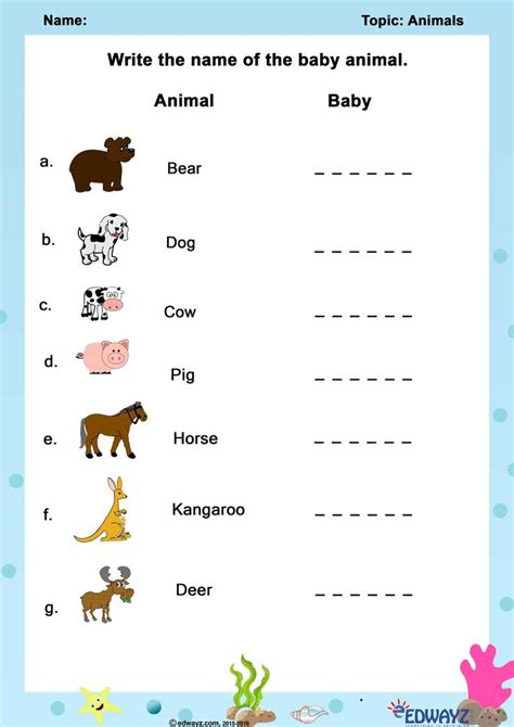 worksheets class  animals worksheets  class